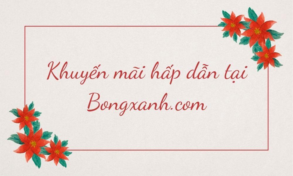 Khuyến mãi hấp dẫn tại Bongxanh.com