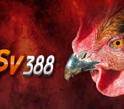 Đại lý SV388